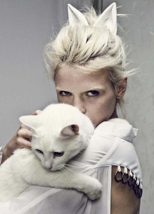 Các chú mèo thường được xuất hiện trong các bộ ảnh thời trang. (Ảnh: Internet)