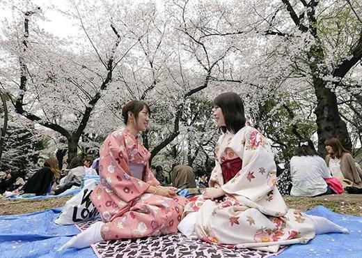 Hỏi câu liên quan tới cá nhân ở Nhật Bản: Thông thường, người Mỹ không hỏi người mới quen những câu như bạn kiếm được bao nhiêu tiền, sao chưa kết hôn. Còn ở Nhật, chuyện hỏi tuổi, thu nhập... là hoàn toàn bình thường. Ảnh: Weebly.