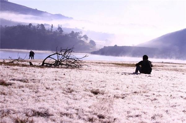 Quang cảnh cánh đồng tuyết trắng xóa, lãng mạn. (Ảnh: Internet)