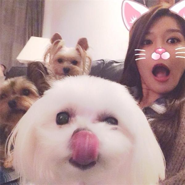 Đọ sắc thú cưng nổi tiếng của loạt thần tượng Kpop