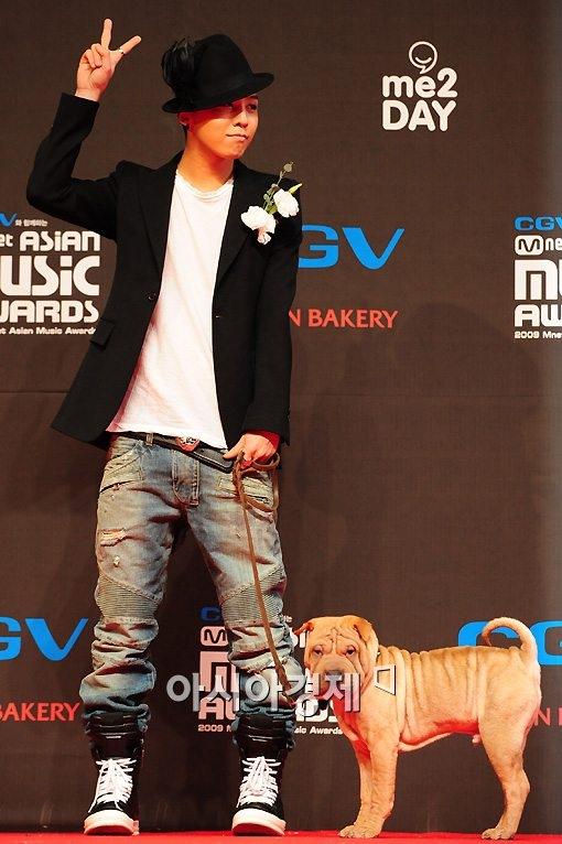 """Chú cún của G-Dragon thuộc giống cho Sharpie. Gaho có hẳn trang Instagram, Tumblr với lượt người theo dõi rất lớn và còn được mời làm """"cameo"""" xuất hiện trong MV của bộ đôi GD&TOP."""