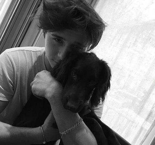 Brooklyn đầu xù tóc rối ôm cún cưng ở nhà