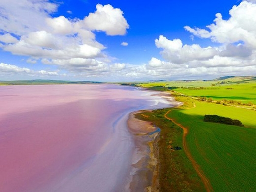 Hồcòn cótên Hillier. Nước hồ mang sắc hồng ấm áp lãng mạn.(Ảnh: Dominic Grimm/SkyPixel)