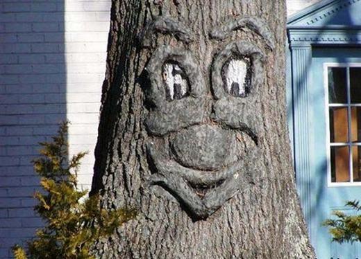 Có lẽ ông chủ cây này rất mê phim hoạt hình. (Ảnh: Internet)