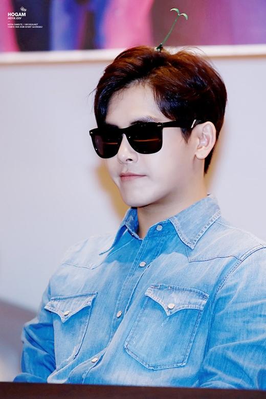 Hoya (Infinite)