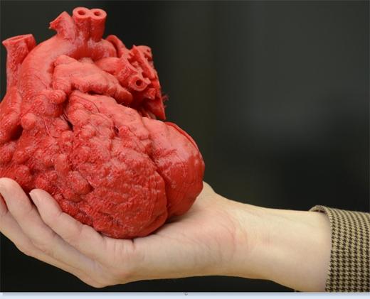 Công nghệ in 3D tiên tiến cho phép các bác sĩ in được bản sao với kích thước thật của một quả tim người bằng cách chụp CT. Công nghệ này giúp các bác sĩ vạch ra kế hoạch chữa trị chứng suy tim bẩm sinh trước khi tiến hành ca mổ. Với việc có mẫu tim kích thước thật để mổ thử nghiệm, họ sẽ rút ngắn được thời gian ở ca mổ thật cũng như loại trừ khả năng phải mổ đi mổ lại nhiều lần. (Ảnh: Medical Daily)