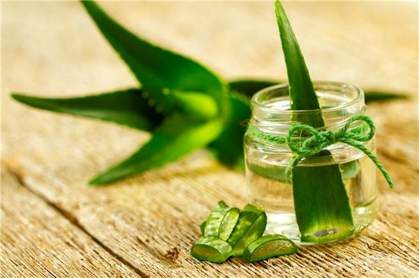 Tác dụng tuyệt vời của gel nha đam luôn được ứng dụng trong việc ngăn ngừa vết thương và giảm mờ sẹo thâm. Gel nha đam có thể tăng sức đề kháng cho da, giảm sưng và giúp tế bào mới phát triển.
