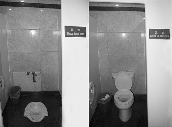 Hai lựa chọn ngồi xổm và... ngồi bệt cho nhà vệ sinh. (Ảnh: Internet)