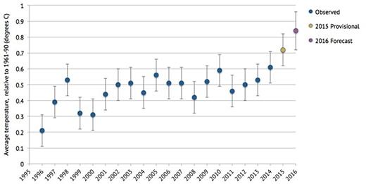 Biểu đồ nhiệt độ toàn cầu trung bình so với giai đoạn 1961-1990, quan sát từ giai đoạn 1996-2014 (màu xanh dương), năm 2015 (màu vàng) và dự đoán tới năm 2016 (màu hồng tím). (Ảnh:WMO và Văn phòngMet)
