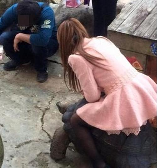 Một thanh niên còn hỗ trợ cô gái này chụp ảnh.