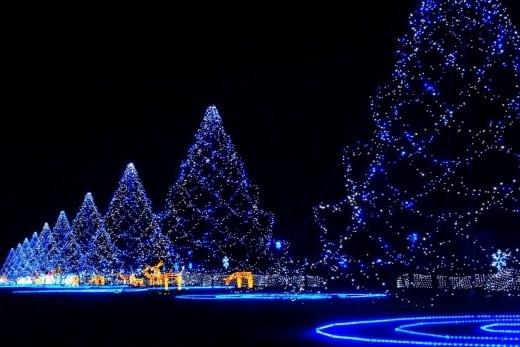 Đây là con đường Giáng sinh Xanh dài nhất, nối liền Cresent Mall đến Hồ Bán Nguyệt! (Ảnh: Internet).