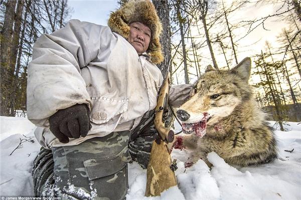 Người thợ săn giữ đầu của một con sói vừa bị anh bắn hạ ở Yakutia, Nga. (Ảnh: James Morgan, Anh)