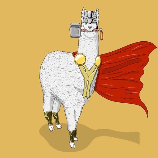 Sở hữu sức mạnh đáng nể, có thể hiểu vì sao Suraj so sánh Thần sấm Thor với... lạc đà Lama.