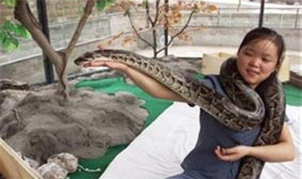 Những người quyết không lấy chồng để sống chung với rắn
