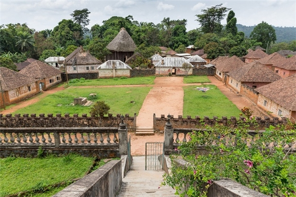 Theo CNN, truyền thống địa phương tại Bafut cho phép người giữ ngai vàng thừa kế tất cả vợ của vị vua trước và cưới các thê thiếp mới.
