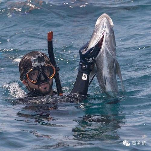 """Ngoài ra, anh chàng sinh năm 1982 này còn có sở thích khá """"dị"""" đó là lặn biển để bắt những con cá."""