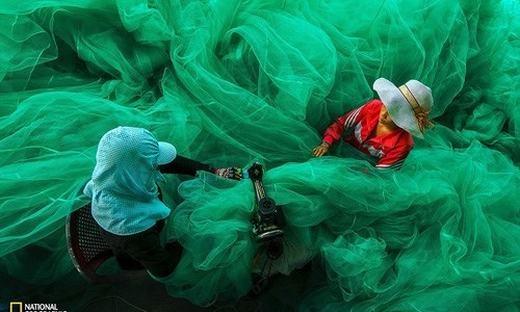 Trong cuộc thi ảnh 2015 của National Geographic, bức ảnh chụp 2 phụ nữ ở làng chài gần Vịnh Vĩnh Hy, tỉnh Ninh Thuận cần mẫn với công việc may lưới trong lúc chờ chồng đi đánh bắt cá của nhiếp ảnh gia Phạm Tỵ nhận được nhiều sự chú ý. Tác phẩm này cũng lọt vào vòng chung kết của giải ảnh Smithsonian Annual Photo Contest và giành vị trí đầu trong Cuộc thi ảnh Smithsonian năm 2015 với trị giá giải thưởng trị giá 2.500 đô la (hơn 54 triệu đồng). Đây là một trong số 5 bức ảnh của nhiếp ảnh gia Việt Nam được chọn vào vòng chung kết.