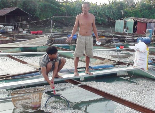 Người dân cho rằng cá chết là do ô nhiễm nguồn nước. Ảnh: Internet