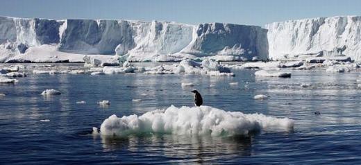 Nam Cực cũng là nơi an toàn để con người trú ngụ. Dù là một trong những nơi lạnh lẽo nhất thế giới nhưng theo đánh giá, đây chính là lợi thế để bảo vệ con người, nhất là khi có một nguồn thực phẩm nhất định được chuẩn bị sẵn. (Ảnh: Internet)