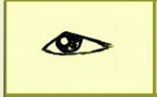 Người có mắt một mí thường trầm tính vững vàng, bình tĩnh, lí trí, hăng hái mà tỉ mỉ, khólàm việcnhanh lẹ. Họ không dễ biểu đạt nhữngcảm nhận, suy nghĩnội tâm, nhưng nghị lực kiên cường, không dễ lùi bước, luôn nỗ lực theo đuổi mục tiêu đã đề ra.(Ảnh Internet)