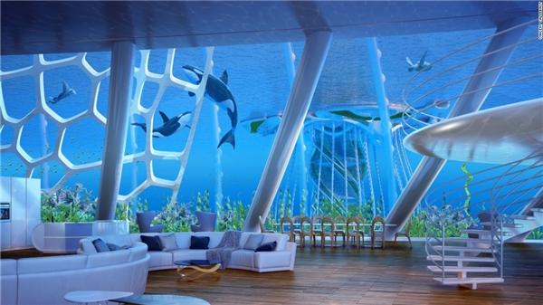 Nhờ Aequorea,chúng ta hoàn toàn có thể tin tưởng vào một cuộc sống mới trong lòng đại dương. (Ảnh: CNN)