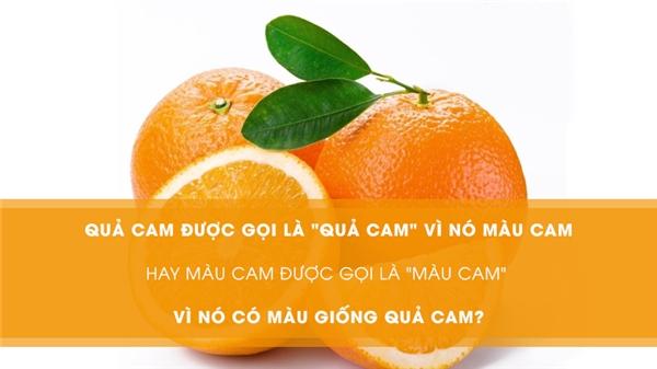 """Quả cam được gọi là """"quả cam"""" vì nó màu cam hay màu cam được gọi là """"màu cam"""" vì nó có màu giống quả cam? (Ảnh: Internet)"""