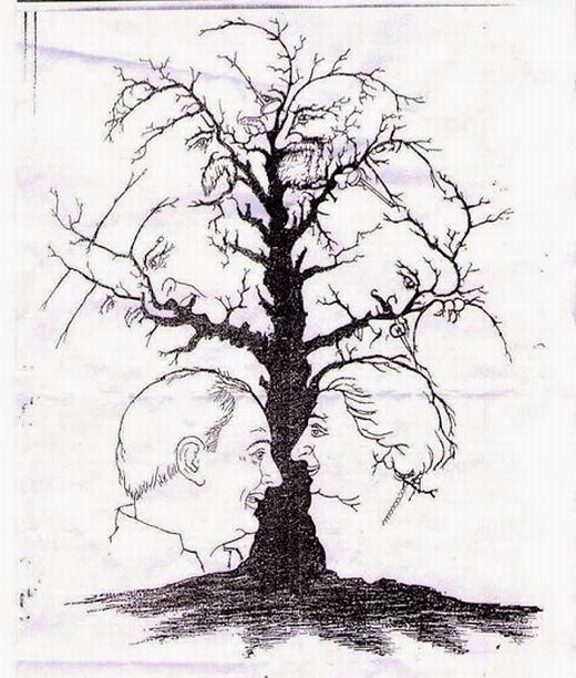 2. Một thân cây ẩn chứa nhiều điều bí mật. (Ảnh: Internet)
