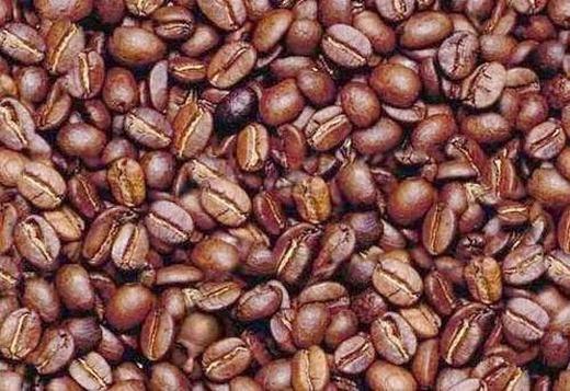 2. Giữa những hạt cà phê này, có một người đang nhìn bạn. Bạn biết hắn ở đâu không? (Ảnh: Internet)