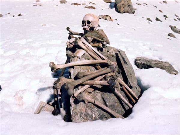 Cận cảnh xương người nằm trên tảng đá vừa tan băng. (Ảnh: Internet)