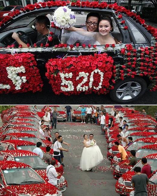 Chú rể Xiao Wang đã khiến cô dâu Xiao Liu bất ngờ và hạnh phúc tột độ khi tích cóp 1 năm tiền lương để mua 99.999 bông hồng đỏ, sau đó trang trí lên rất nhiềuxe đón dâu. Đám cưới của họ tổ chức tại Trùng Khánh, miền trung Trung Quốc, thu hút sự chú ý củakhông chỉ quan khách mà còn cảngười dân hiếu kì. Được biết, số 9 là con số được nhiều người nơi đây dùng với hàm ý may mắn. (Ảnh: Internet)