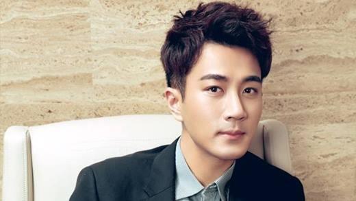 Lưu Khải Uy là con trai của diễn viên gạo cội Lưu Đan, nên việc anh lựa chọn theo chân bố gia nhập TVB không phải là chuyện lạ. Trước khi bước chân vào đài này, anh từng nhận giải nhất trong một cuộc thi ca hát dành cho người Hoa ở Canada. Những tưởng với lợi thế này, Lưu Khải Uy có thể sớm thành danh ở TVB, nhưng mọi chuyện lại đi ngược với mong đợi của anh.Sau 13 năm lăn lộn ở TVB với hàng chục vai diễn nhỏ không được chú ý mấy, năm 2007, Lưu Khải Uy quyết định chuyển hướng sang đại lục để phát triển. Vài năm sau đó anh tỏa sáng với Thiên Sơn Mộ Tuyết và trở thành chàng mĩnam ngôn tình được rất nhiều khán giả yêu quí.