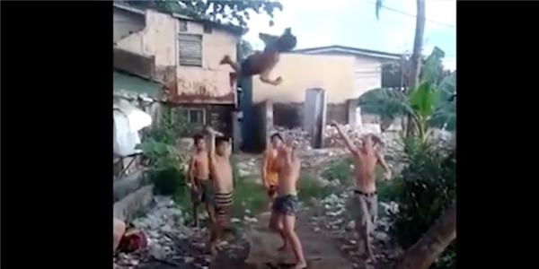 Choáng trước màn nhào lộn như bay của nhóm trẻ quê nghèo.