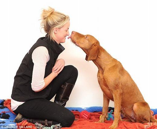 Chó là động vật có thể phản ứng trước cảm xúc đối phương sau con người và một số loài linh trưởng. (Ảnh: Internet)