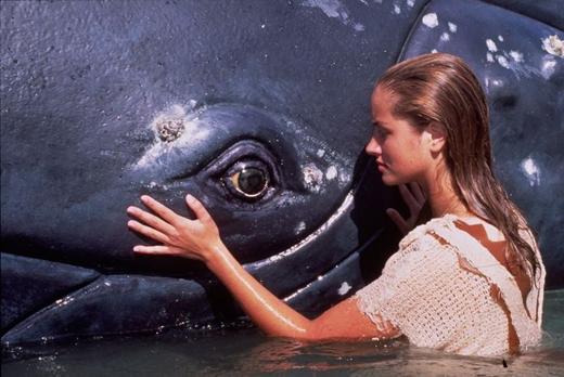 Cô gái đại dương:Đây là một trong những bộ phim nổi tiếng trên sóng truyền hình ngày ấy kể về cô gái có năng lực siêu nhiên mang tên Neri.Côsống cô lập trên một hòn đảo nhỏ giữa đại dương, có thể lặn sâu vào lòng biển, sinh hoạt và trò chuyện như bạn bè vớicác sinh vật biển. (Ảnh: Internet)