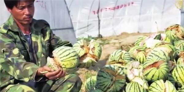 Kinh hãi trước những loại thực phẩm dơ bẩn và độc hại từ Trung Quốc