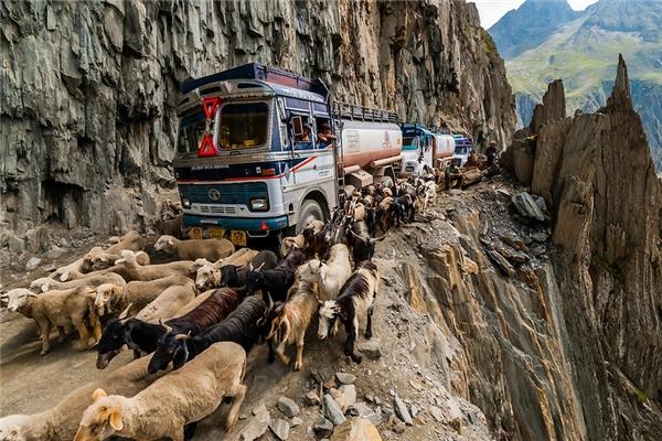 Đây còn là con đường duy nhất nối người dân ở Ladakh với thế giới bên ngoài.(Ảnh: Internet)