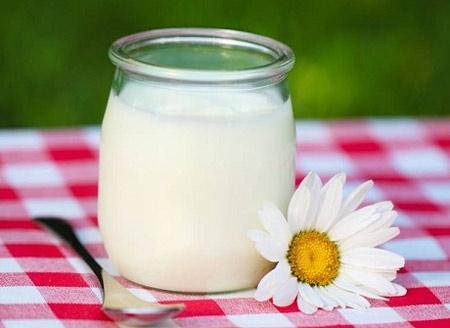 Sữa chua không chỉ ngon mà còn rất tốt cho sức khỏe.(Ảnh: Internet)