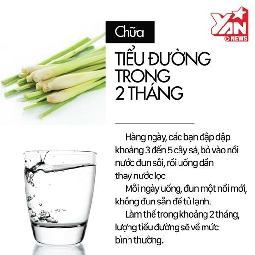 Dùng nguyên liệuthiên nhiênchữa bệnh tiểu đường vừa an toàn, hiệu quả, lạikhông gây ra những tác dụng phụ. Hơn nữa, những loại nguyên liệuchữa tiểu đường lại có sẵn và rất dễ kiếm ở Việt Nam, ví dụ như cây sả chẳng hạn.