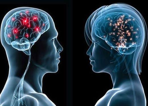 Dung lượng tối đa não chúng ta chứa làbao nhiêu? (Ảnh: Internet)