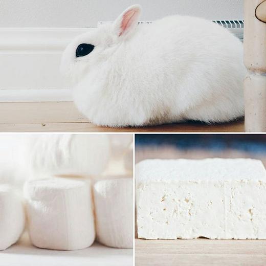 Twitch không rõ trắng muốt giống kẹo dẻo marshmallow hơn hay giống đậu hũ hơn. (Ảnh: bunnzilla)