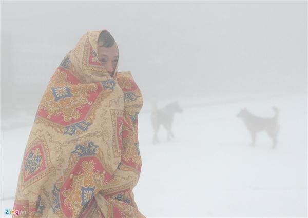 Tuyết rơi trắng xóa khắp nơi ở miền Bắc. Ảnh: Zing