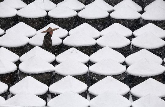 Nhiệt độ xuống thấp khiến băng giá, tuyết xuất hiện khắp nơi trên thế giới. Ảnh: Internet