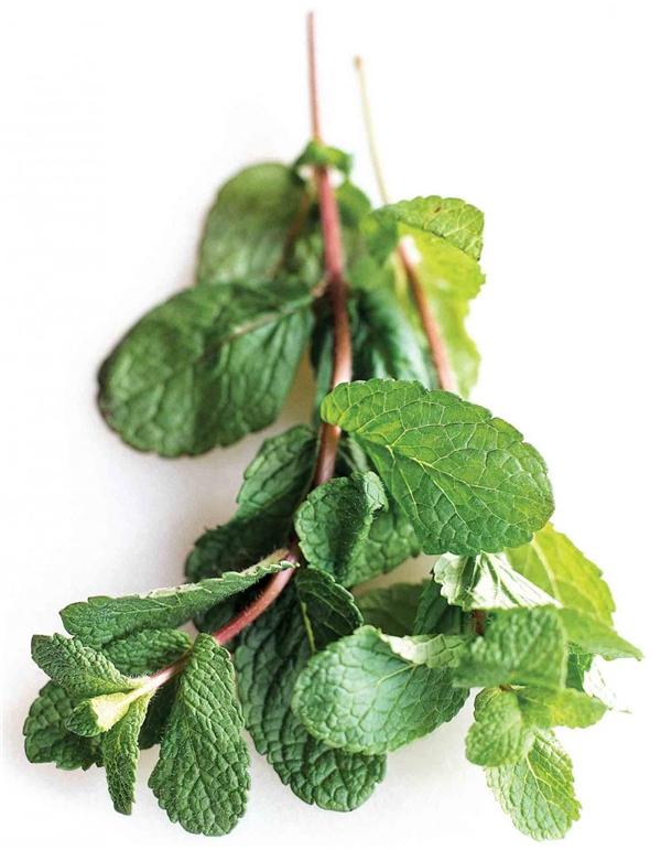Những loại lá nhiều diệp lục rất có ích trong việc khử mùi.(Ảnh: Internet)