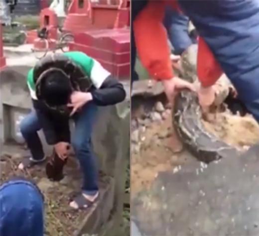 Dù đã rất cố gắng nhưng cuối cùng người dân phải phá dỡ mộ mới đưa được con trăn ra. (Ảnh: Internet)