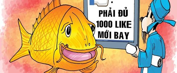 """Cá chép cũng biết câu """"like"""". (Ảnh: Internet)"""