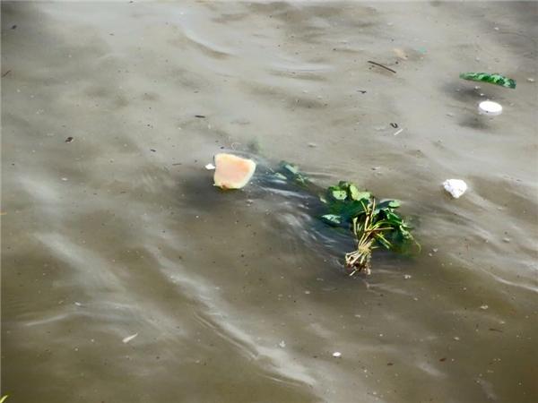 Hàng ngàn du khách đổ về vui chơi, Vũng Tàu chìm trong bãi rác