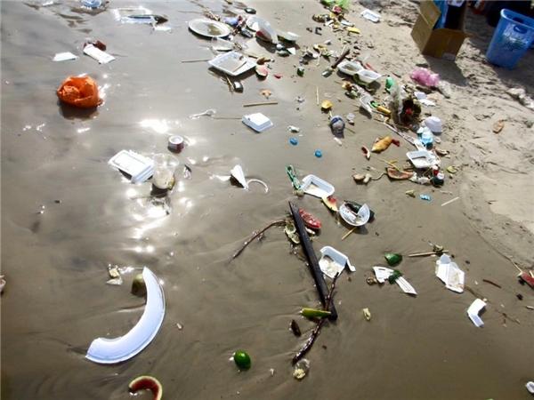 Rác tràn ngập ở bãi biển Vũng Tàu. Ảnh: FB