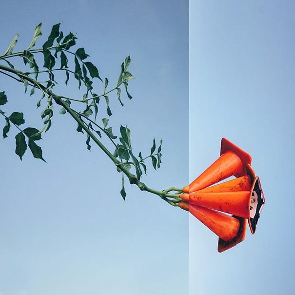 Bạn có nhận ra hoa loa kèn thực chất là gì? (Ảnh: Internet)