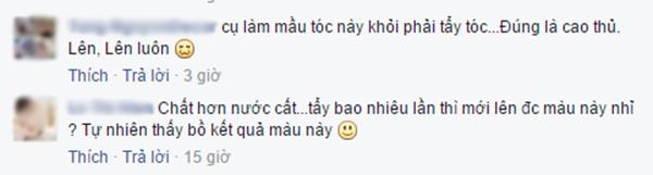 Hai bình luận của T.N.D và L.T.H. (Ảnh: Ảnh chụp màn hình từ FBNV)