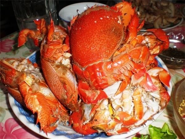 Một số đặc sản khác không thể quên thưởng thức là da cá mú bông ngon ngọt, cua huỳnh đế nướng hấp dẫn, gỏi ốc vú nàng, cá mú đỏ hấp gừng, gỏi rau câu hải sản…(Ảnh: Internet)